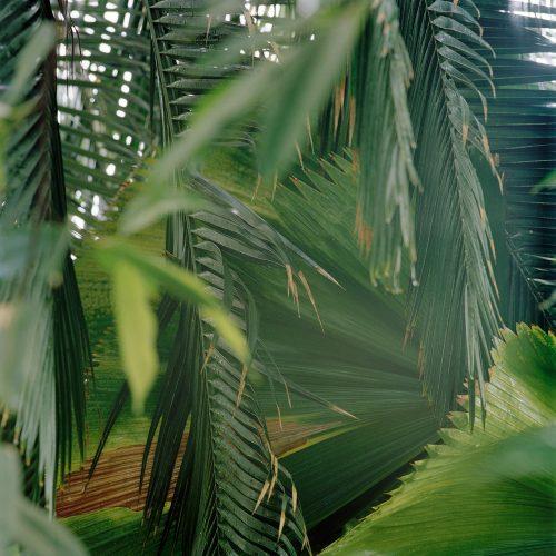 """Foto: Paul Kuimet, """"Nimeta 1"""", transparent (u 107 × 107 cm) kinnitatuna akrüülklaasile, 2020"""